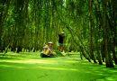 Những điểm đến du lịch hấp dẫn ở An Giang